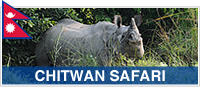 CHITWAN SAFARI